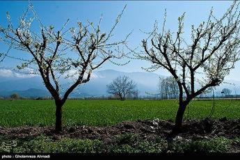 طبیعت زیبای بهاری مازندران