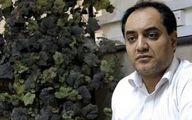 حیدرزاده: با نگهداری حیوانات در بوستان های شهری به شدت مخالفیم