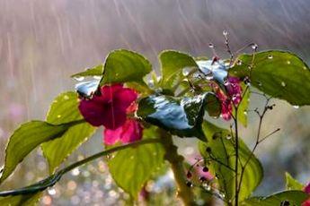 حجم بارش های کشور به ۱۷۲ میلیمتر رسید