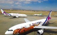 شباهت عجیب طرح یوز هواپیمای تیم ملی به شرکت رقیب وطنی(عکس)