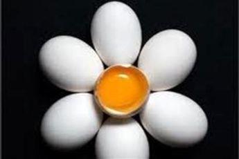 مصرف زرده تخم مرغ عسلی, انجیر و انگور مانع ریزش و سلامت مُو می شود