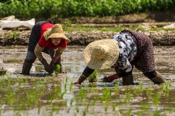 توزیع اعتبارات خرید ماشین آلات کشاورزی در گیلان