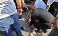 ترخیص 27 نفر از مصدومان حمله تروریستی