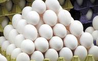 دلایل افزایش قیمت تخم مرغ