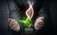 رفع مشکلات اقتصادی بانکهای ژن کشور ضروری است