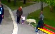 حمله گرگ به کودک ۲ ساله + فیلم