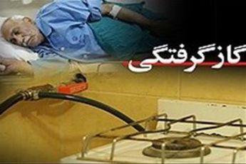 مرگ ۱۶۹ نفر به دلیل مسمومیت با گاز CO در استان تهران