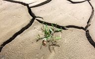 شیراز|خشک شدن 150 چاه در استان فارس؛ 20 درصد صرفهجویی برای عبور از بحران آب+فیلم