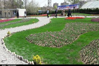 اراک| نخستین جشنواره گل لاله استان مرکزی به روایت تصویر