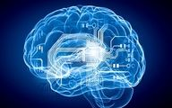 چگونه حافظه خود را تقویت کنیم؟