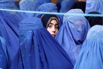 یک بام و دو هوای طالبان
