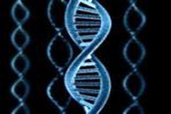افزایش طول عمر با استفاده از بزرگترین پروژه توالی ژنوم انسان